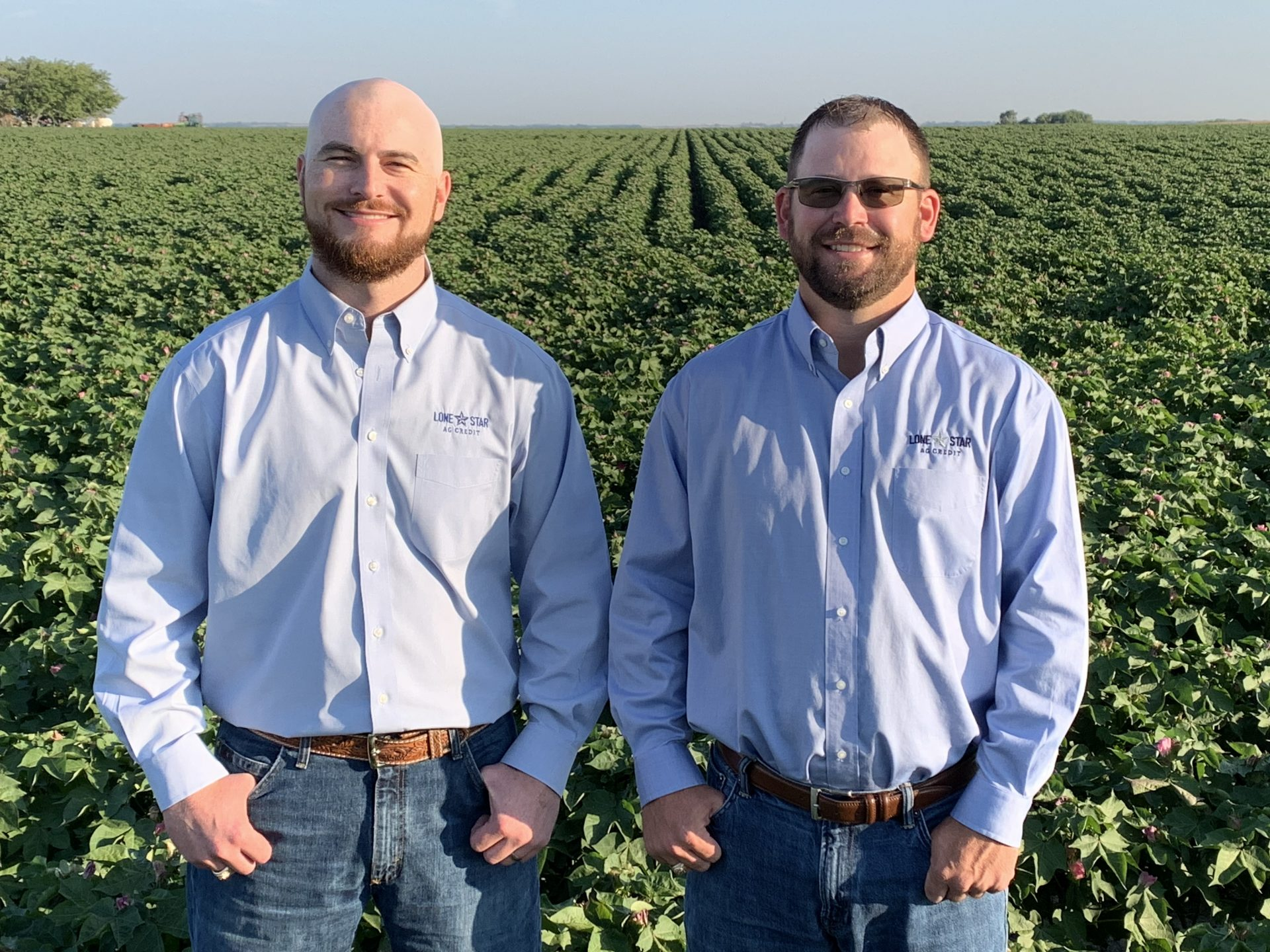 Lone Star Ag Credit lenders, Patrick Hejl and Aaron Nors stand by a crop in the field.