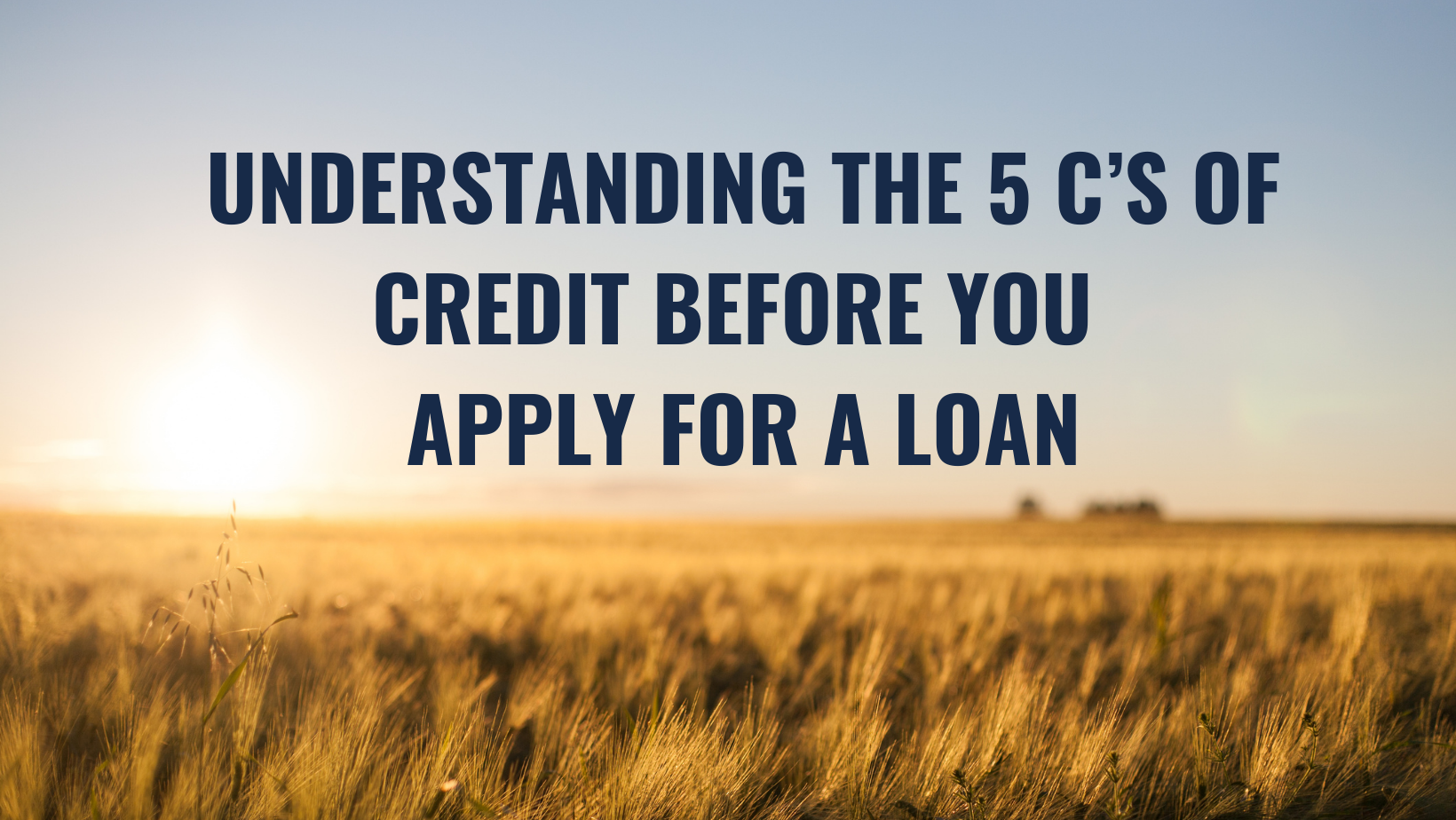 picture of field. Understanding the 5C's of Credit