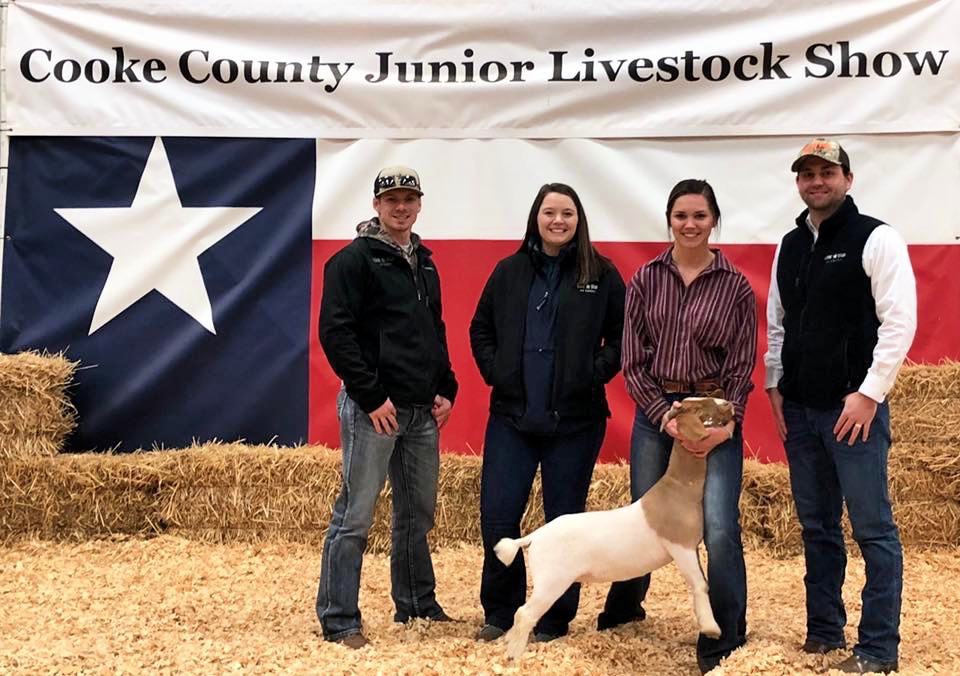 Denton staff at stock show