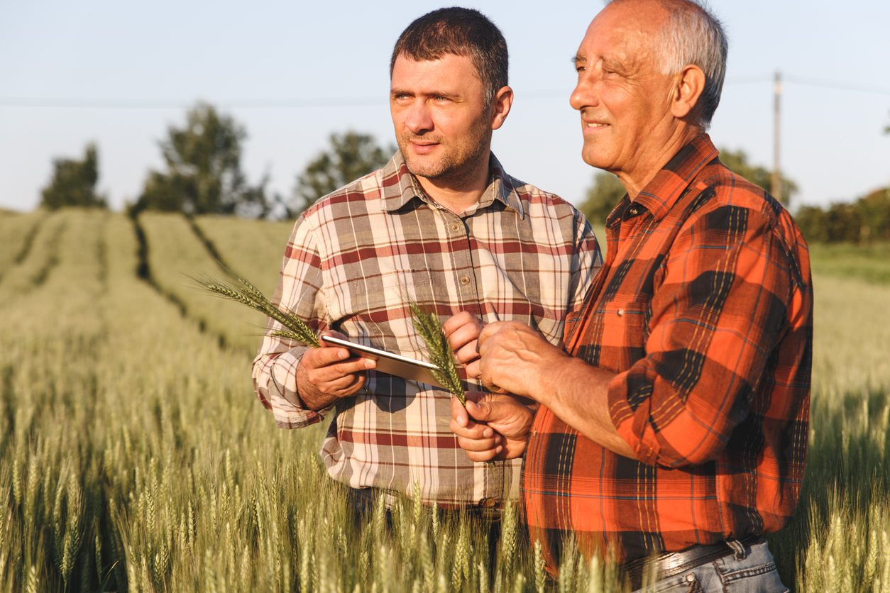 Men with tablet in a field looking at sunset
